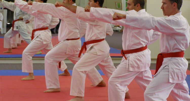 Karate Line Training